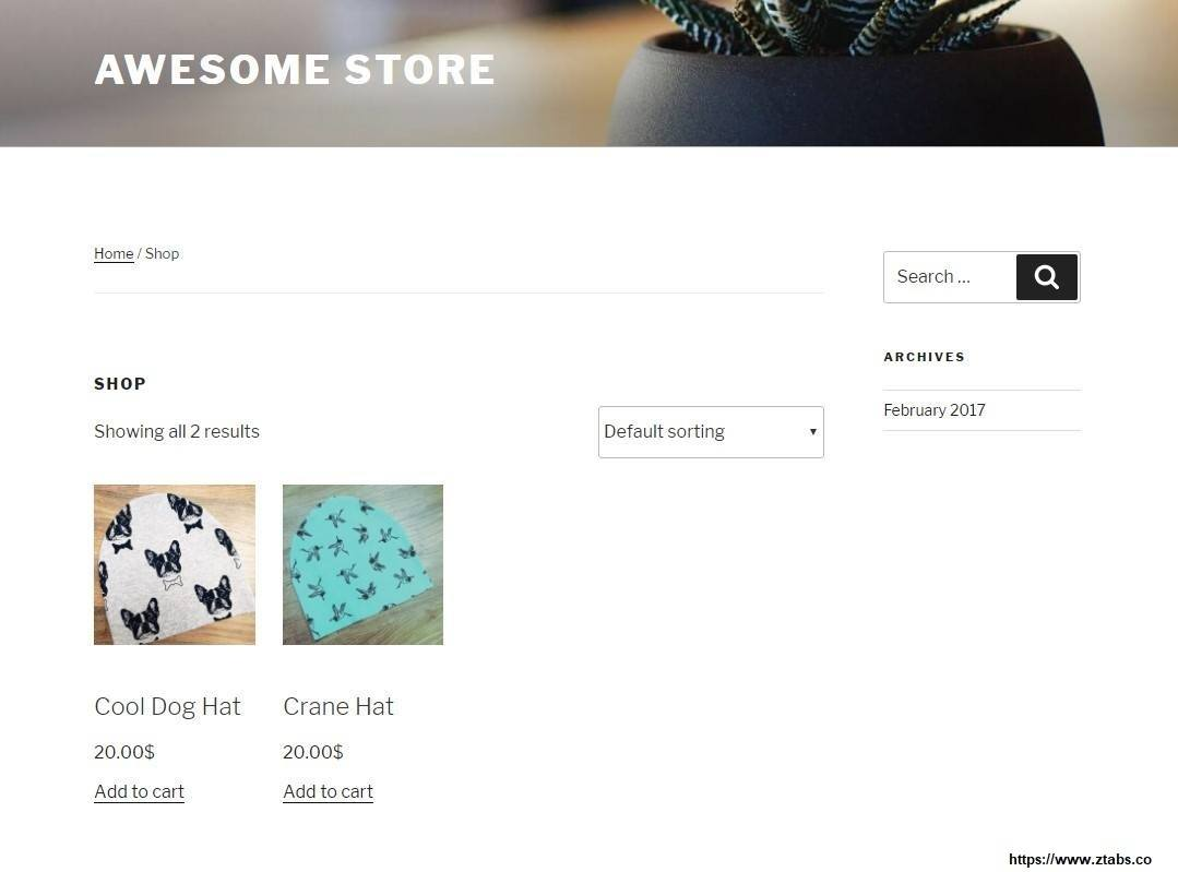 WooCommerce-store-example